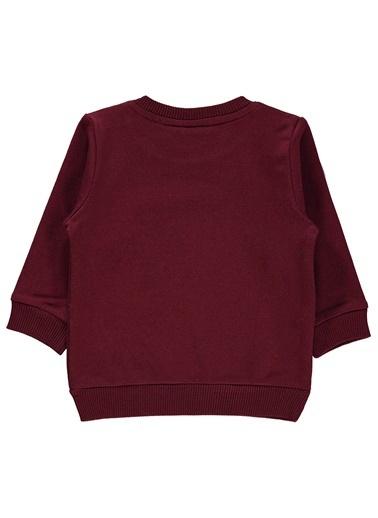 Harry Potter Sweatshirt Bordo